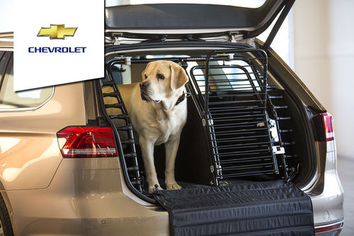 Dog gate Chevrolet