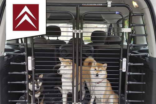 Dog gate Citroen