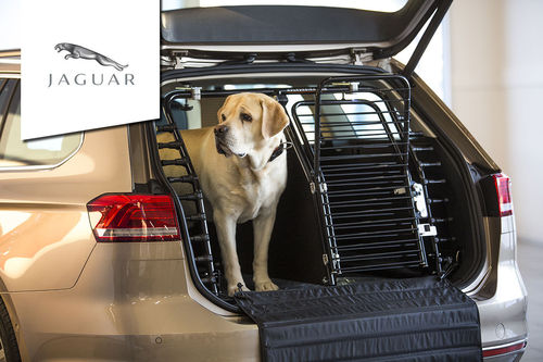 Dog gate Jaguar