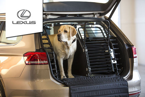 Dog gate Lexus